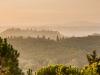 Утренний туман на восходе в Тосканских холмах