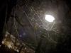 фонарь у кремля
